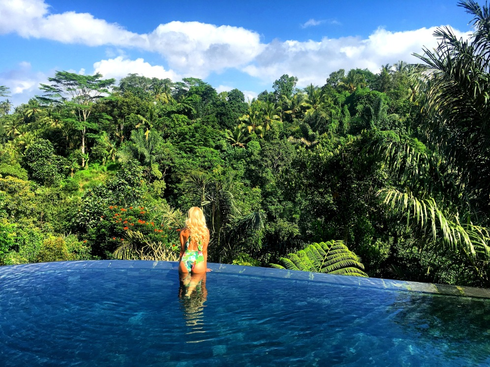 Ubud Jungle View