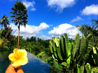 Ubud Lotus Flower