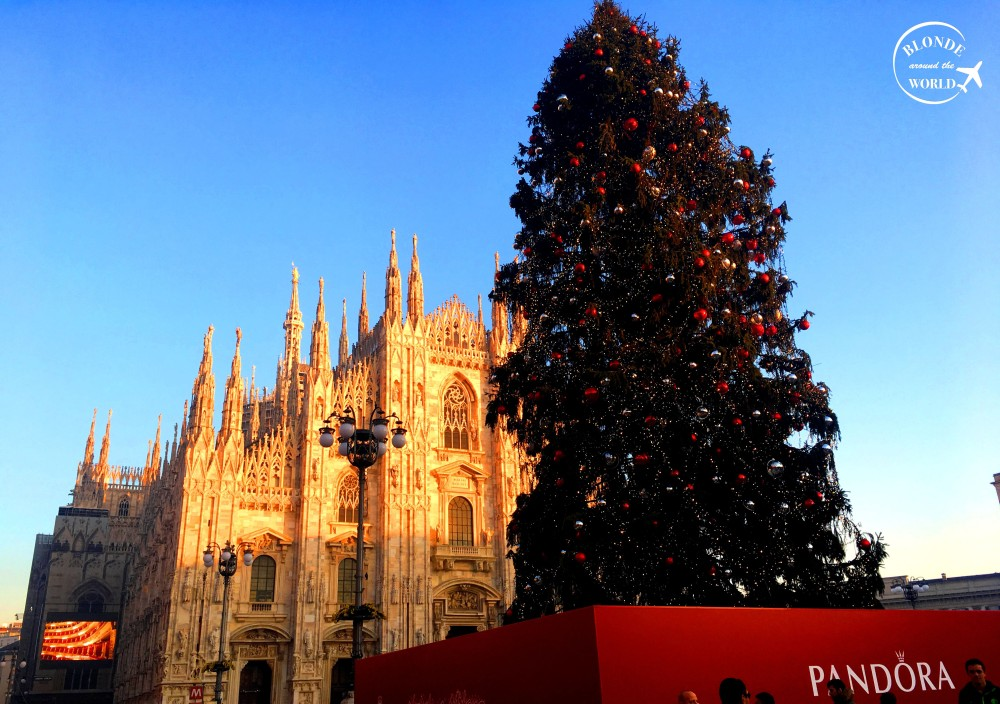 milan-byday-christmas-tree
