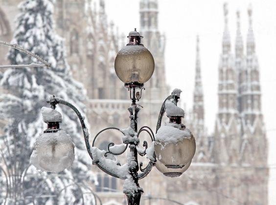 snowy-milan3.jpg